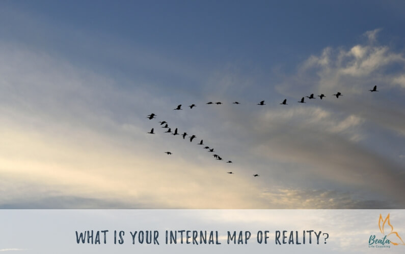 What is your internal map of reality?
